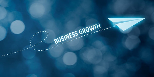 Basic Steps to Grow Your Business