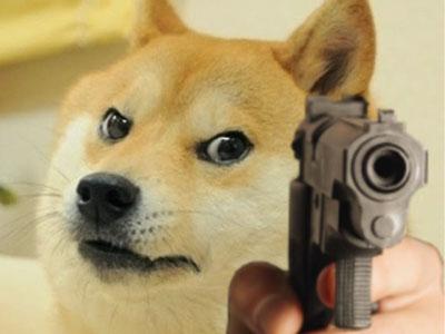 Doge - Funny Viral Meme