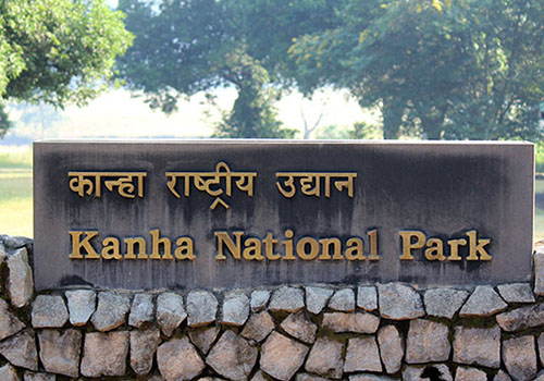 Kanha National Park - See Tigers in India
