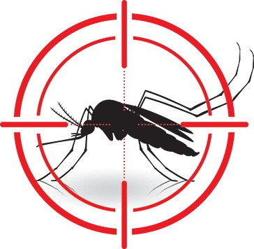 Kill Mosquitoes without Medicine