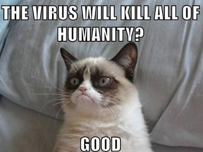 LOLcats - Funny Viral Meme