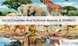 List of Countries and Their National Animals & Wildlife with Images