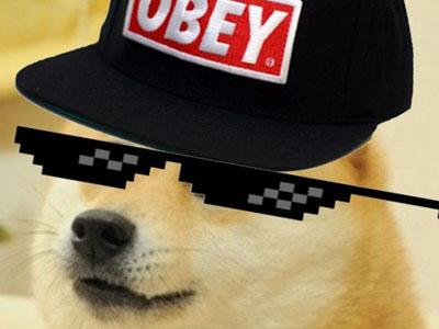 OBEY - Funny Viral Meme