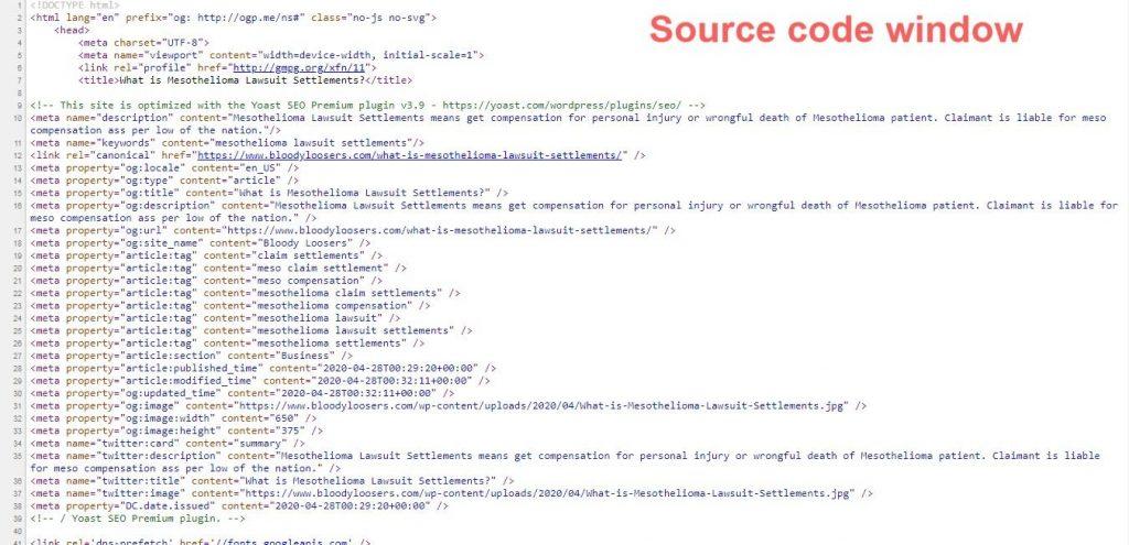 Source Code Window