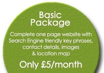 Monthly Website Design Basic Package