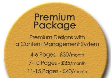Monthly Website Design Premium Package